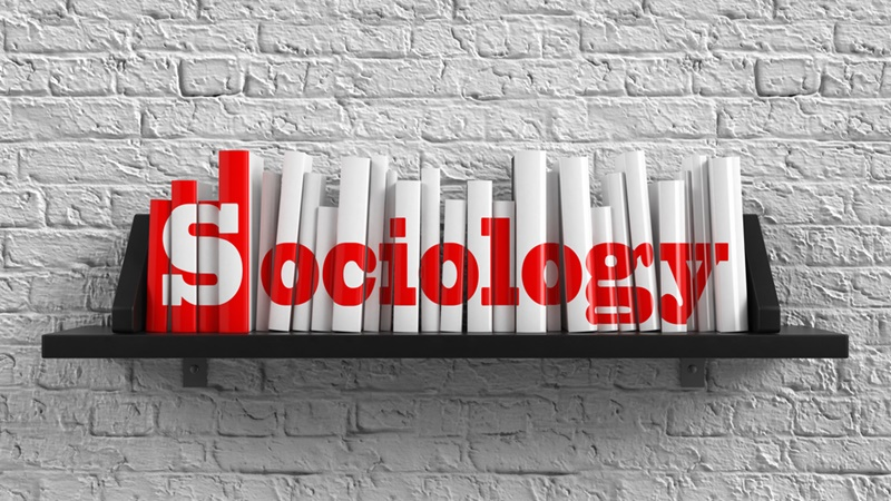sociology-course_107090_large